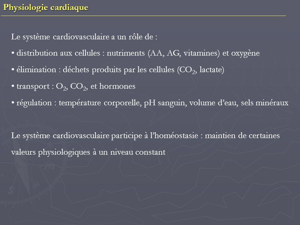 Physiologie cardiaque La contraction cardiaque intervient à la fin de la phase de dépolarisation Les contractions cardiaques ne peuvent se sommer- Le muscle cardiaque est intétanisable Existe une période réfractaire – Le calcium joue un rôle fondamental dans la contraction Résumé : PA au niveau des cellules nodales autoexcitables PA au niveau des cellules myocardiques de loreillette = contraction Dépolarisation du nœud auriculo-ventriculaire Dépolarisation des cellules du faisceau de His et des fibres de Purkinje PA au niveau des cellules ventriculaires = contraction des ventricules