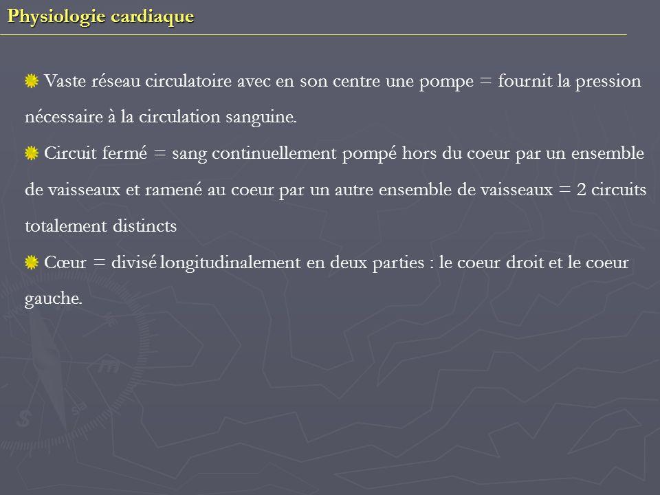 Physiologie cardiaque I/ Lappareil circulatoire A/ Le coeur