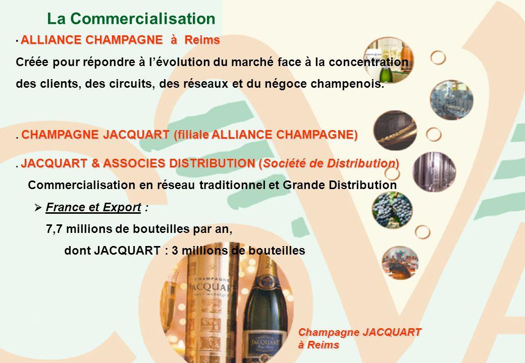La Commercialisation ALLIANCE CHAMPAGNE à Reims Créée pour répondre à lévolution du marché face à la concentration des clients, des circuits, des rése