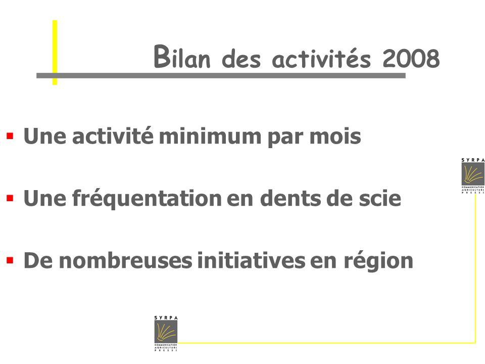 B ilan des activités 2008 Une activité minimum par mois Une fréquentation en dents de scie De nombreuses initiatives en région
