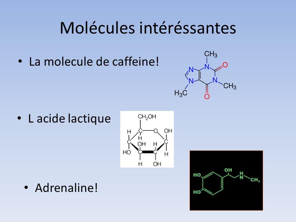 Molécules intéréssantes La molecule de caffeine! L acide lactique Adrenaline!