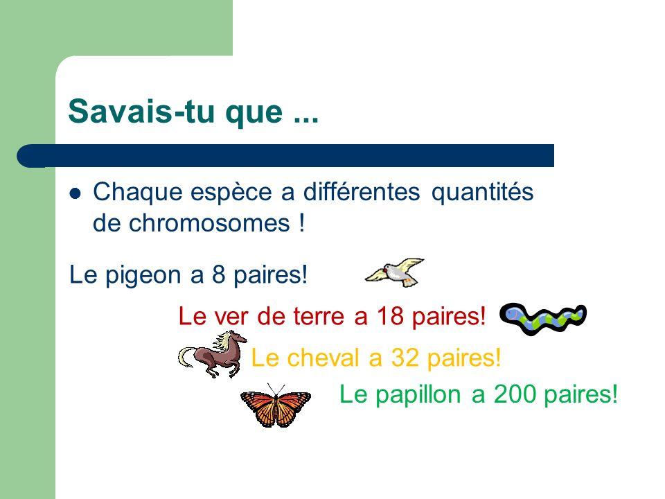 Savais-tu que...Chaque espèce a différentes quantités de chromosomes .