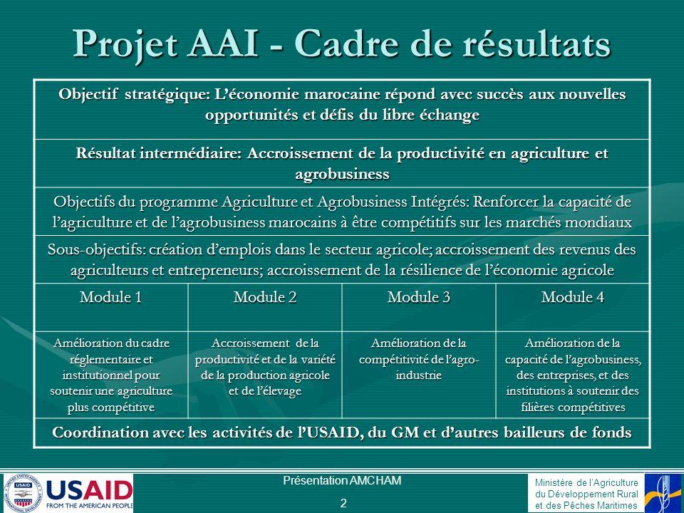 Ministère de lAgriculture du Développement Rural et des Pêches Maritimes Présentation AMCHAM 2 Projet AAI - Cadre de résultats Objectif stratégique: L