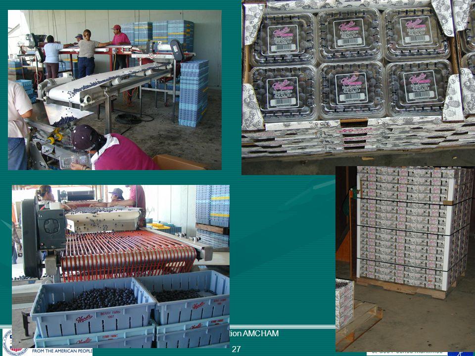 Ministère de lAgriculture du Développement Rural et des Pêches Maritimes Présentation AMCHAM 28 Fenêtres potentielles dexportation des myrtilles du Maroc aux USA