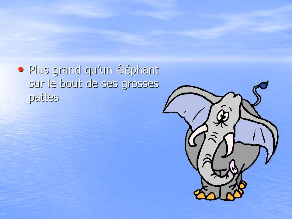 Plus grand quun éléphant sur le bout de ses grosses pattes Plus grand quun éléphant sur le bout de ses grosses pattes