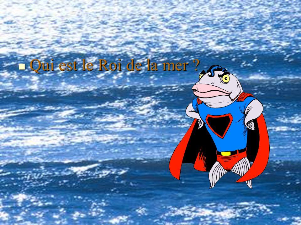 Qui est le Roi de la mer ? Qui est le Roi de la mer ?