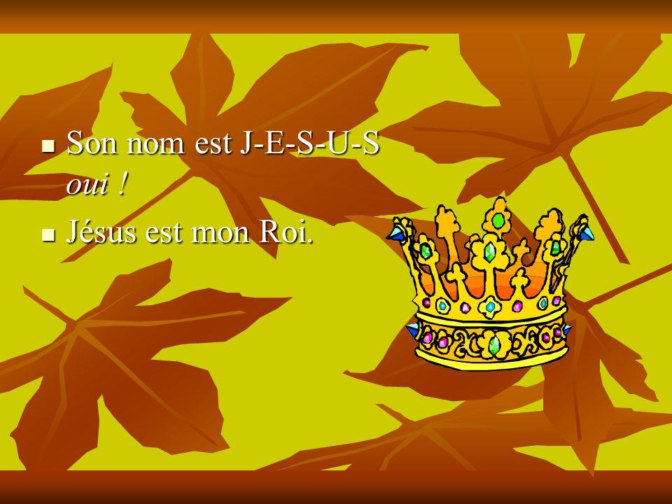Il est le Roi de lunivers, Il est le Roi de lunivers, Et de ma vie entière.
