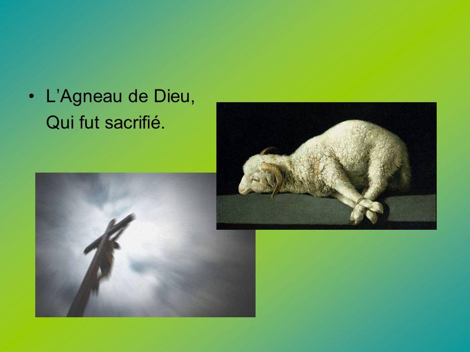 LAgneau de Dieu, Qui fut sacrifié.
