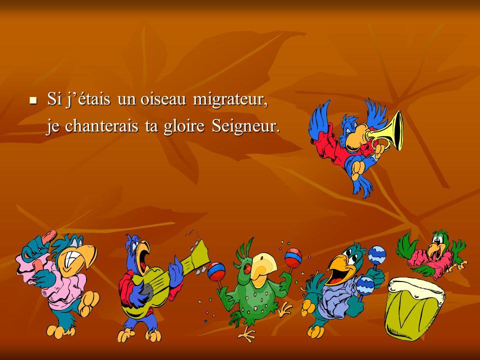 Si jétais un oiseau migrateur, Si jétais un oiseau migrateur, je chanterais ta gloire Seigneur.
