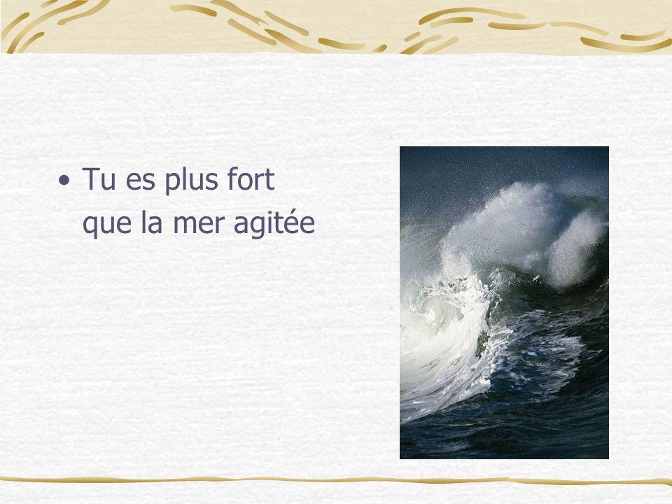 Tu es plus fort que la mer agitée