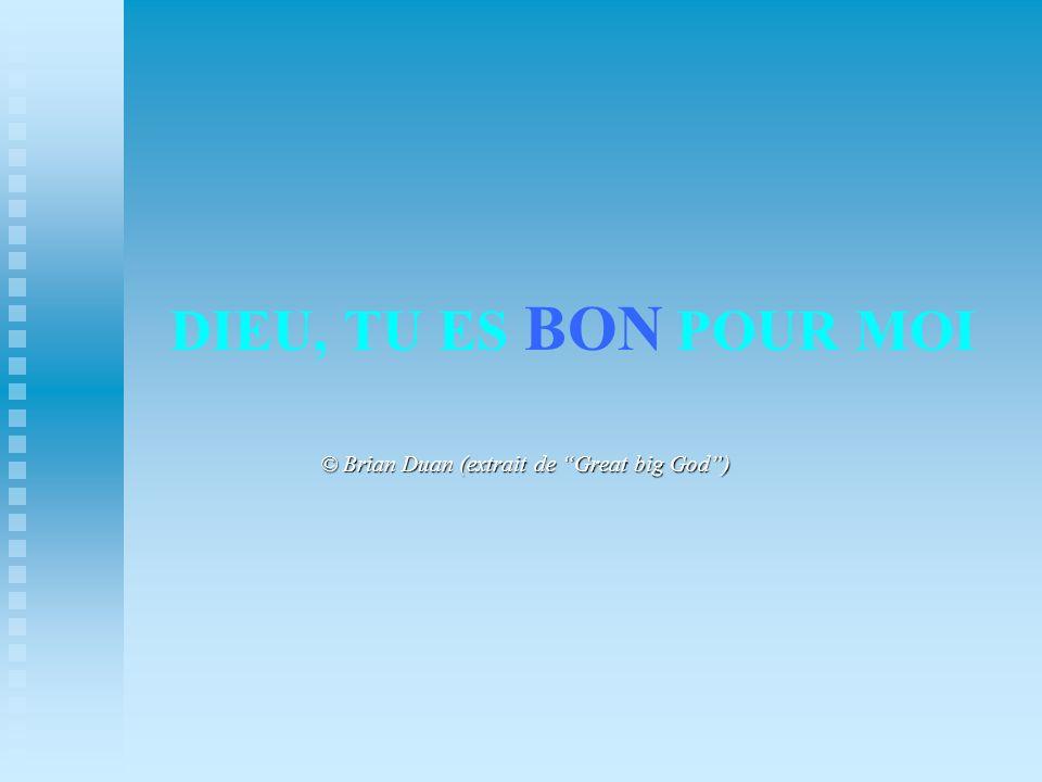 DIEU, TU ES BON POUR MOI © Brian Duan (extrait de Great big God)