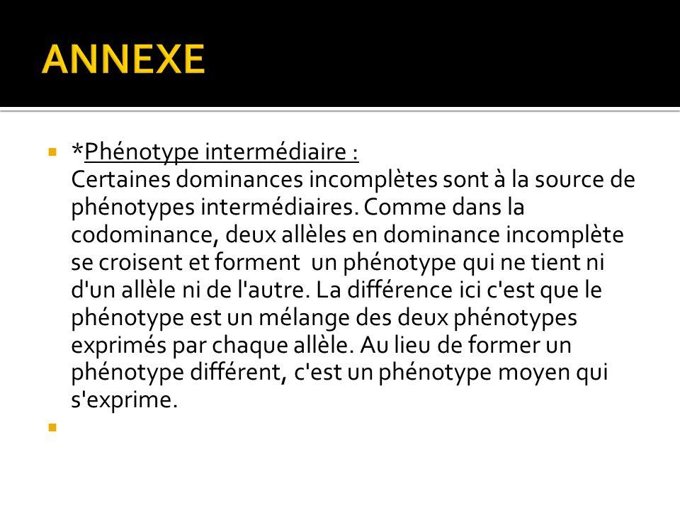 *Phénotype intermédiaire : Certaines dominances incomplètes sont à la source de phénotypes intermédiaires. Comme dans la codominance, deux allèles en