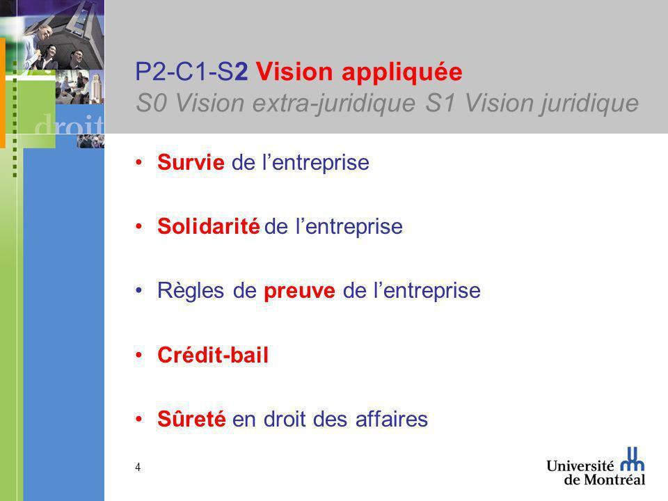4 P2-C1-S2 Vision appliquée S0 Vision extra-juridique S1 Vision juridique Survie de lentreprise Solidarité de lentreprise Règles de preuve de lentreprise Crédit-bail Sûreté en droit des affaires