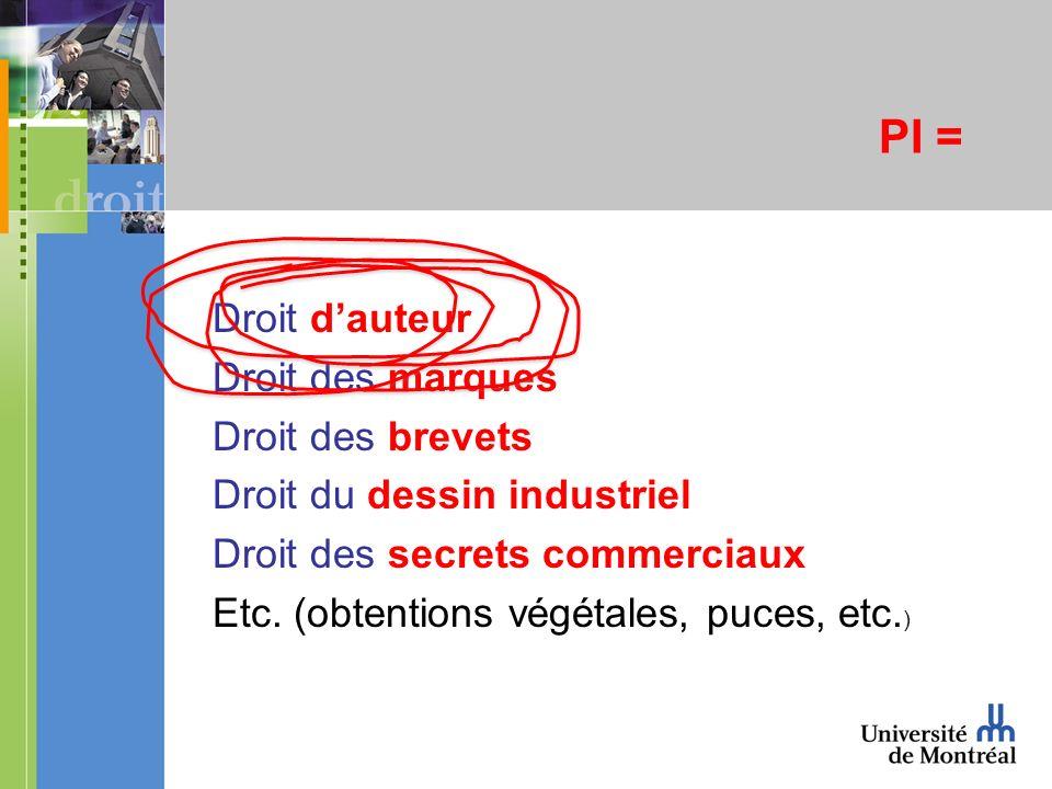 PI = Droit dauteur Droit des marques Droit des brevets Droit du dessin industriel Droit des secrets commerciaux Etc.