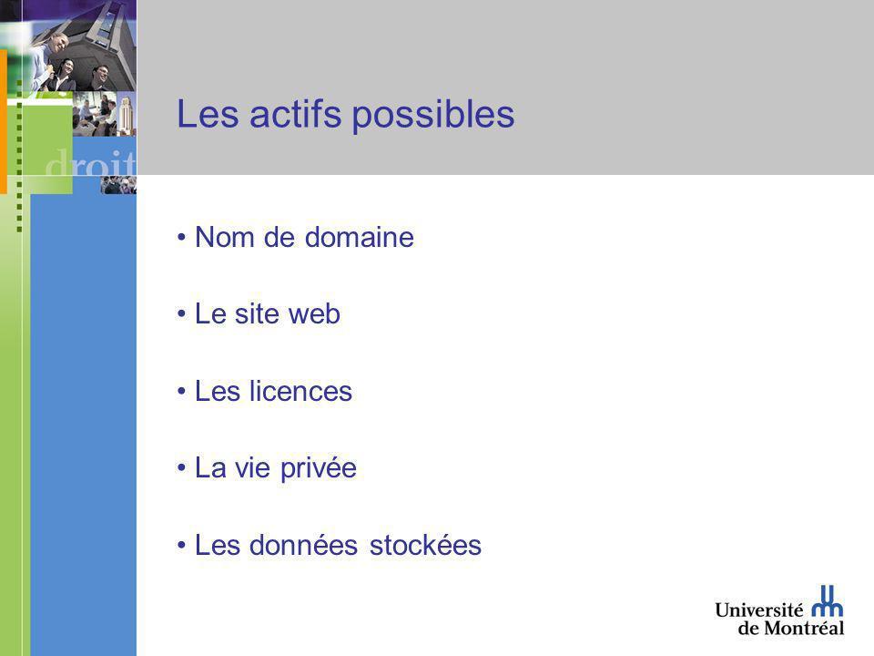 Les actifs possibles Nom de domaine Le site web Les licences La vie privée Les données stockées