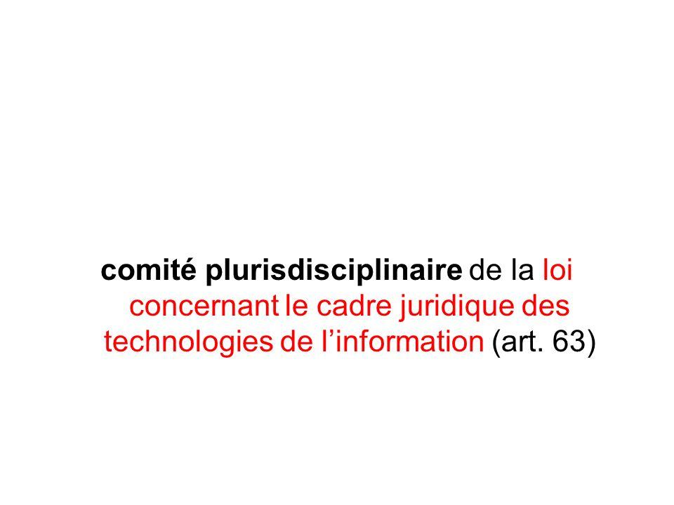 comité plurisdisciplinaire de la loi concernant le cadre juridique des technologies de linformation (art.