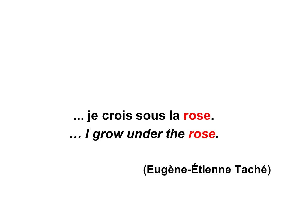 ... je crois sous la rose. … I grow under the rose. (Eugène-Étienne Taché)
