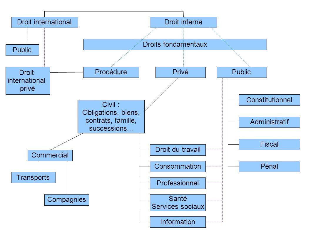 Droit internationalDroit interne Public Droit international privé Droits fondamentaux Procédure Civil : Obligations, biens, contrats, famille, success