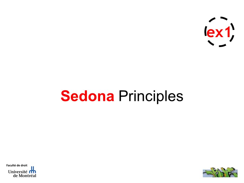 Sedona Principles ex1