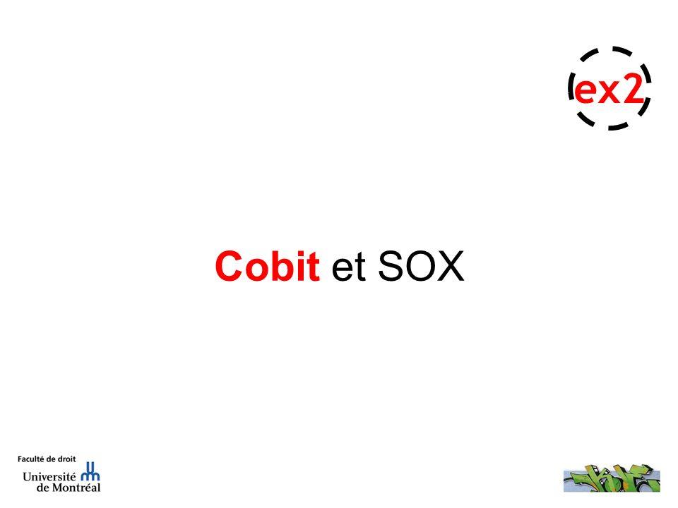 Cobit et SOX ex2