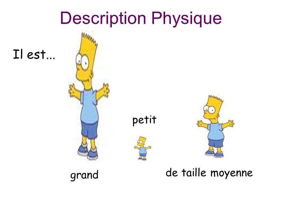 Description Physique Il est... grand petit de taille moyenne