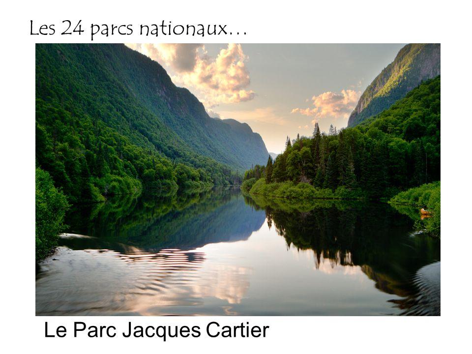 Les 24 parcs nationaux… Le Parc Jacques Cartier