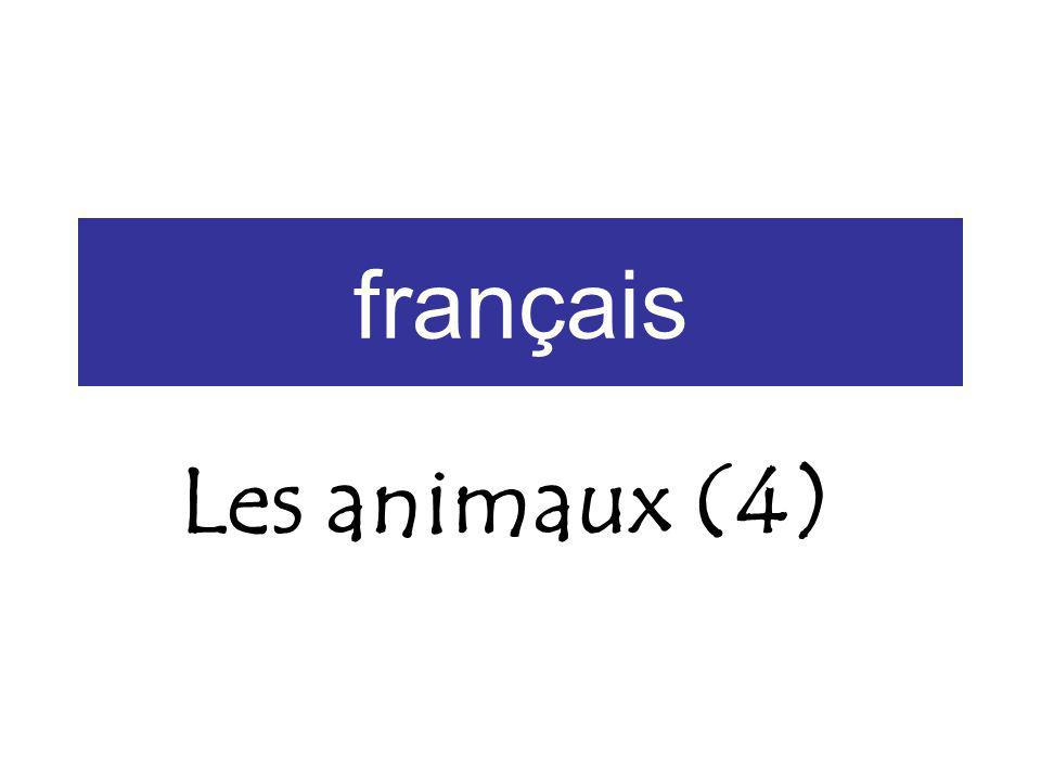 Grammaire: Pluriel To form the plural of a noun, you usually add s.