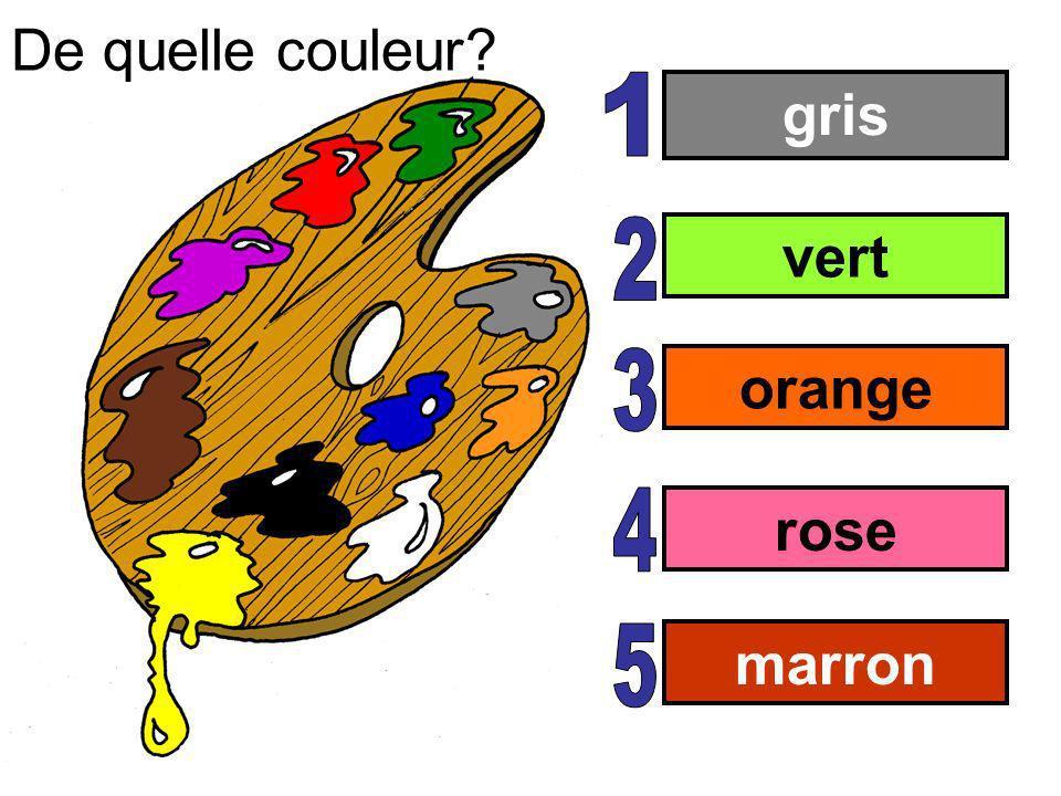 gris vert orange rose marron De quelle couleur?