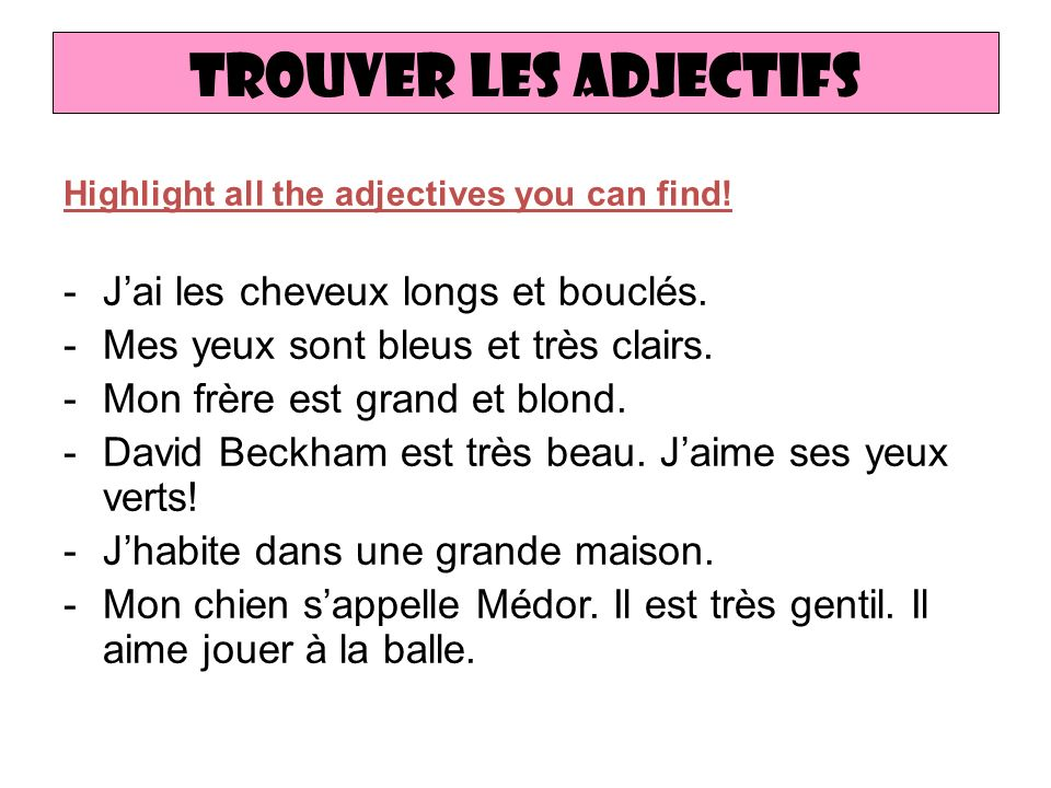 Trouver les adjectifs Highlight all the adjectives you can find.