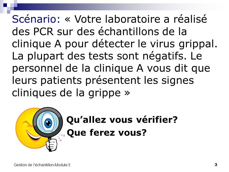 Gestion de l'échantillon-Module 5 3 Quallez vous vérifier? Que ferez vous? Scénario: « Votre laboratoire a réalisé des PCR sur des échantillons de la