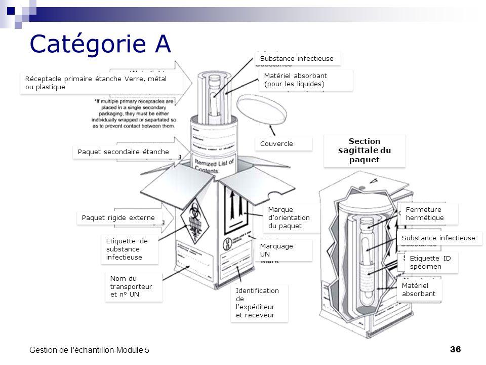 Gestion de l'échantillon-Module 5 36 Catégorie A Substance infectieuse Matériel absorbant (pour les liquides) Couvercle Marque dorientation du paquet