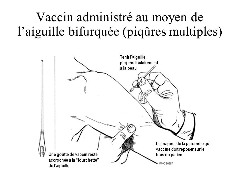 Vaccin administré au moyen de laiguille bifurquée (piqûres multiples) Une goutte de vaccin reste accrochée à la fourchette de laiguille Tenir laiguill