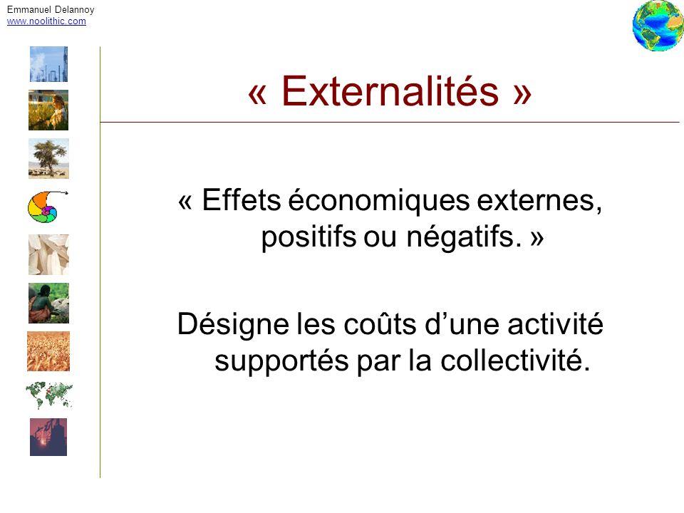 Emmanuel Delannoy www.noolithic.com « Externalités » « Effets économiques externes, positifs ou négatifs. » Désigne les coûts dune activité supportés