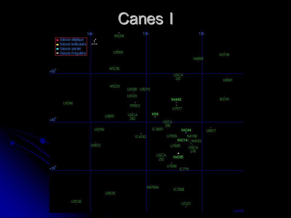 Canes I
