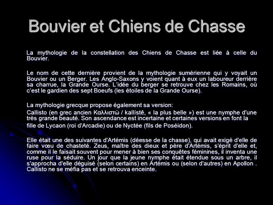 Bouvier et Chiens de Chasse La mythologie de la constellation des Chiens de Chasse est liée à celle du Bouvier. La mythologie de la constellation des