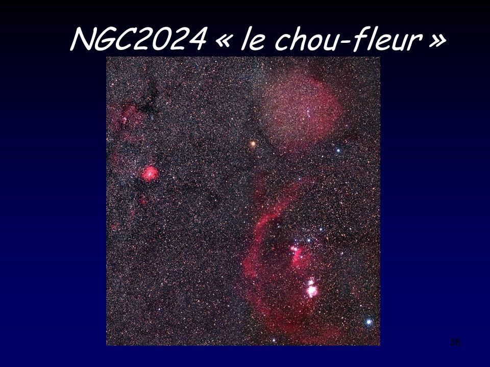 36 NGC2024 « le chou-fleur »