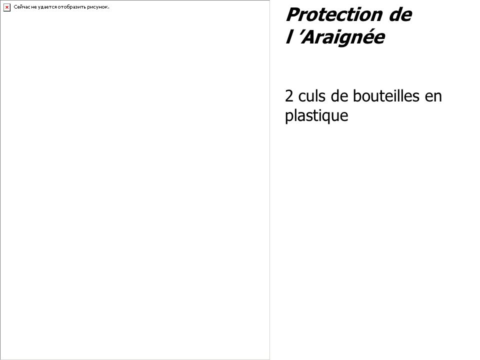 Protection de l Araignée 2 culs de bouteilles en plastique