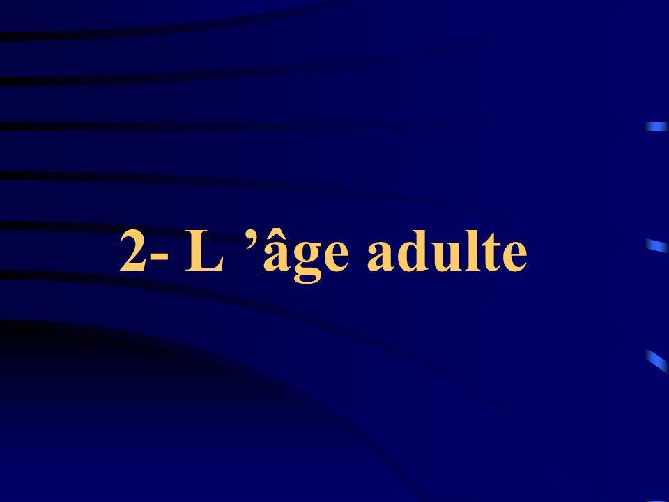 2- L âge adulte