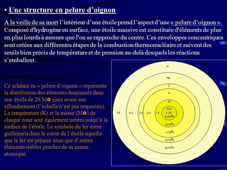 Une structure en pelure doignon A la veille de sa mort lintérieur dune étoile prend laspect dune « pelure doignon ». Composé d'hydrogène en surface, u
