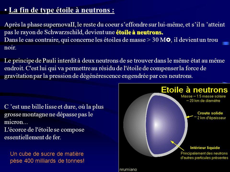 La fin de type étoile à neutrons : étoile à neutrons., Après la phase supernovaII, le reste du coeur seffondre sur lui-même, et sil n atteint pas le r
