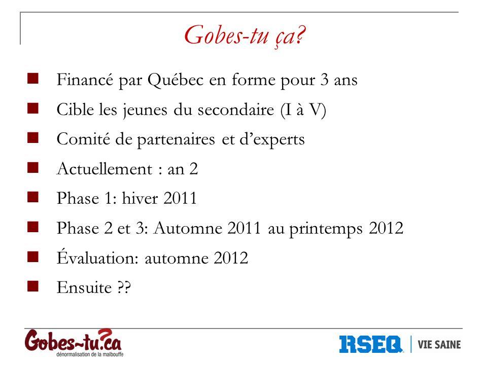 Gobes-tu ça? Financé par Québec en forme pour 3 ans Cible les jeunes du secondaire (I à V) Comité de partenaires et dexperts Actuellement : an 2 Phase