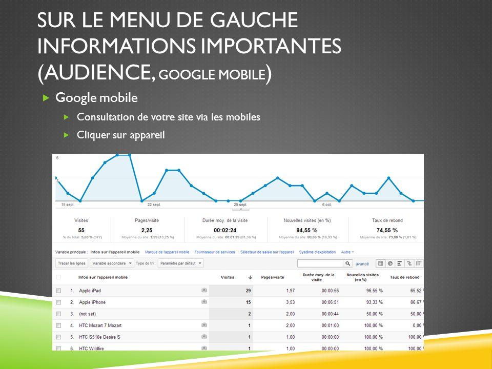 SUR LE MENU DE GAUCHE INFORMATIONS IMPORTANTES (AUDIENCE, GOOGLE MOBILE ) Google mobile Consultation de votre site via les mobiles Cliquer sur apparei