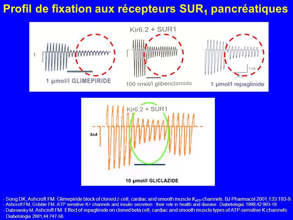 Profil de fixation aux récepteurs SUR 1 pancréatiques - Song DK, Ashcroft FM. Glimepiride block of cloned cell, cardiac and smooth muscle K ATP channe