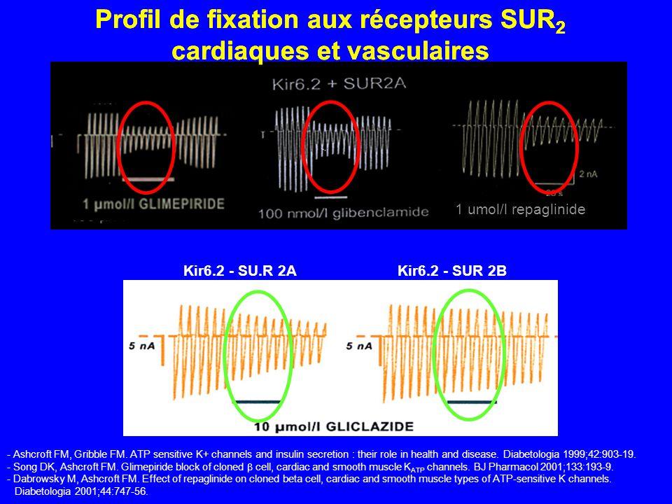 Kir6.2 - SU.R 2AKir6.2 - SUR 2B Profil de fixation aux récepteurs SUR 2 cardiaques et vasculaires - Ashcroft FM, Gribble FM. ATP sensitive K+ channels