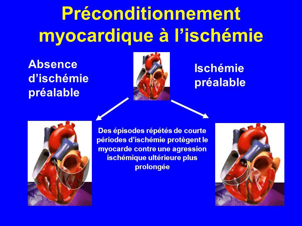 Préconditionnement myocardique à lischémie Absence dischémie préalable Ischémie préalable Des épisodes répétés de courte périodes dischémie protègent