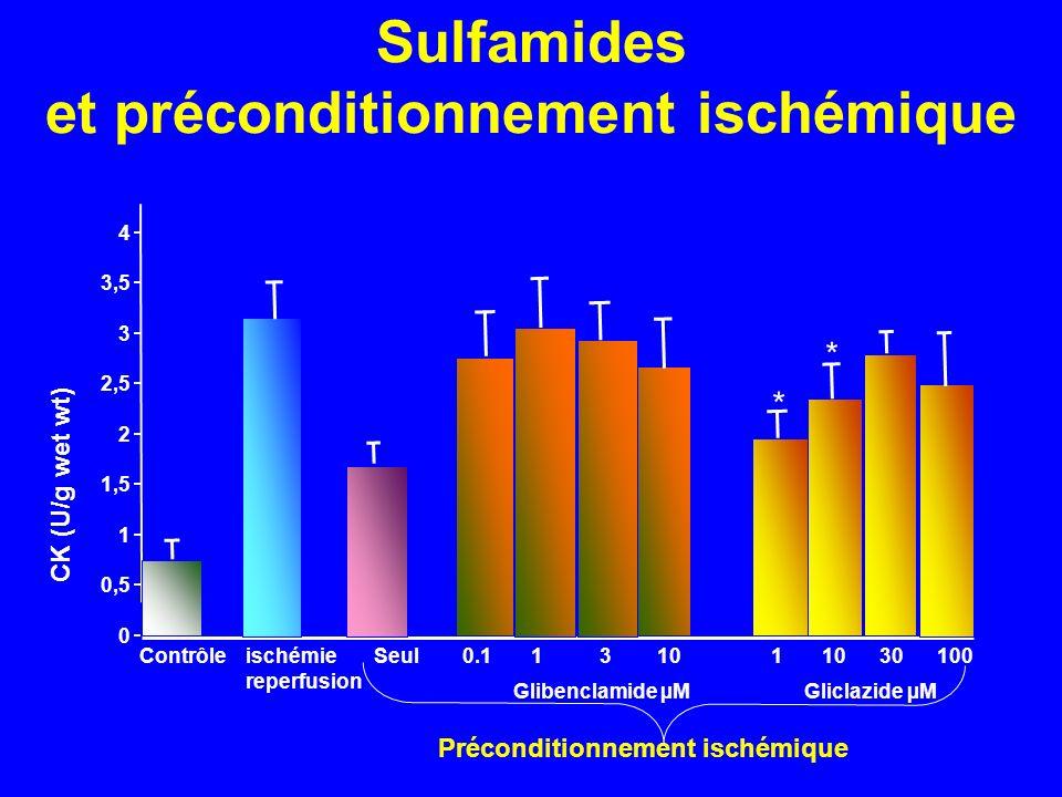 Sulfamides et préconditionnement ischémique 0 0,5 1 1,5 2 2,5 3 3,5 4 * * Contrôleischémie Seul reperfusion 0.1 1 3 10 1 10 30 100 Glibenclamide µMGli