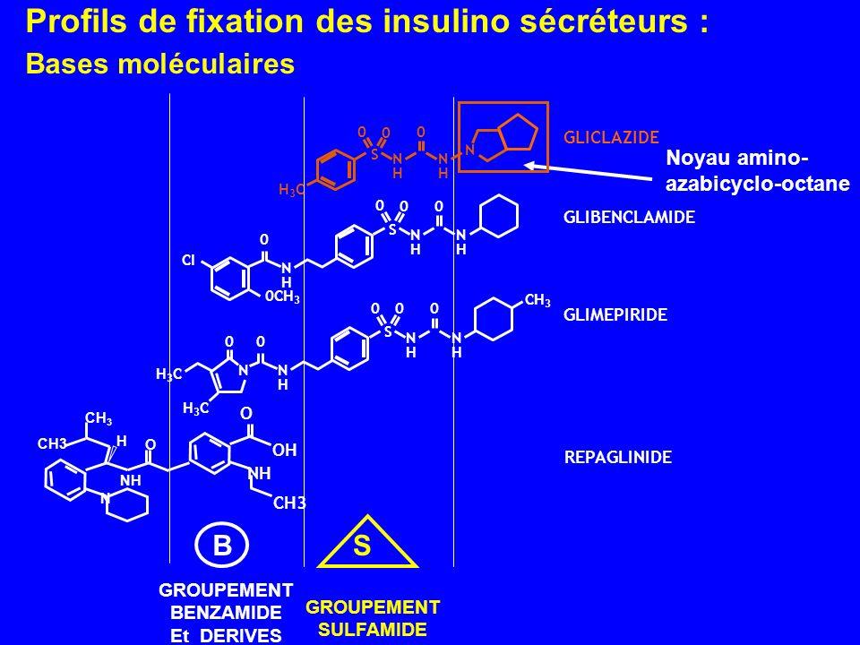 Profils de fixation des insulino sécréteurs : Bases moléculaires Noyau amino- azabicyclo-octane GROUPEMENT BENZAMIDE Et DERIVES GROUPEMENT SULFAMIDE B