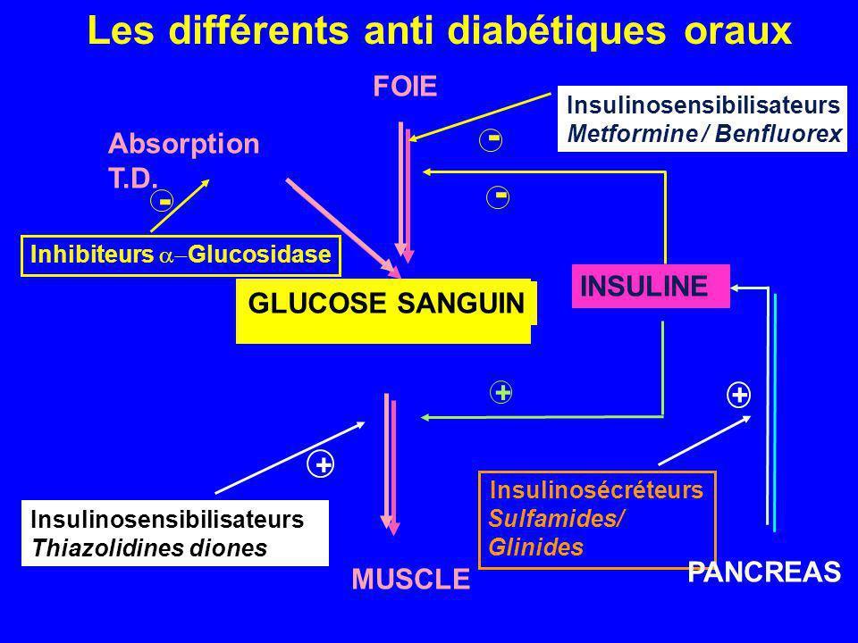 Absorption T.D. Inhibiteurs Glucosidase INSULINE GLUCOSE SANGUIN Insulinosécréteurs Sulfamides/ Glinides + - FOIE MUSCLE - + - + PANCREAS Insulinosens