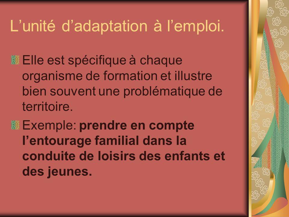 Lunité dadaptation à lemploi. Elle est spécifique à chaque organisme de formation et illustre bien souvent une problématique de territoire. Exemple: p