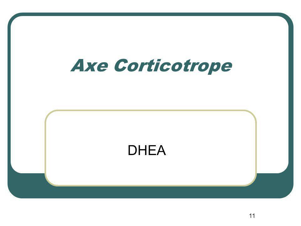 11 Axe Corticotrope DHEA